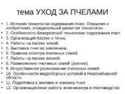 тема УХОД ЗА ПЧЕЛАМИ  1. История технологии