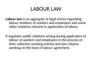 Презентация labor law 1