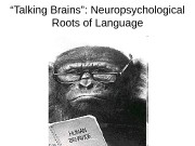 """ Talking Brains"": Neuropsychological Roots of Language"