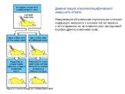 Демонстрация опухолеспецифического иммунного ответа. Иммунизация облученными опухолевыми клетками