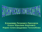 Владимир Петрович Прохоров Елена Юрьевна Воронина Мария Александровна