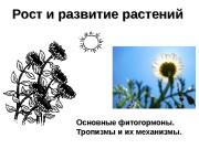 Рост и развитие растений Основные фитогормоны. Тропизмы и