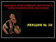 Презентация ЛЕКЦИЯ 10 Операции на сосудах нервах и сухожилиях