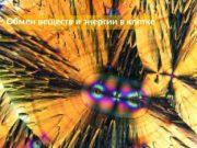Обмен веществ и энергии в клетке  Энергия