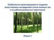 Особенности проектирования и создания искусственных насаждений в лесах