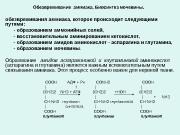 Презентация Лекция 9 Обмен белков. Обезвреживание аммиака и особенности обмена аминокислот