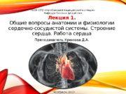 Лекция 1. Общие вопросы анатомии и физиологии сердечно-сосудистой