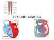 ГЕМОДИНАМИКА  Закономерности и механизмы движения крови по
