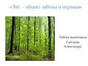 «Лес — объект заботы и охраны »