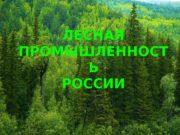 ЛЕСНАЯ ПРОМЫШЛЕННОСТ Ь РОССИИ  Леса покрывают более