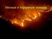 Презентация Лесные и торфяные пожары