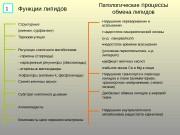 Презентация lipidy-pat-1