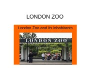 Презентация london zoo