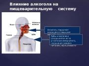 Презентация Лопатниченко Таня А- 21 2часть