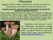 Презентация Мікологія Леція 1 Бенгус New