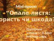 """Міні-проект """" Опале листя: користь чи шкода? """""""