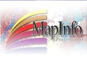 Map. Info Professional  В наши дни информатизация