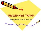 Презентация mechanism
