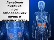 Лечебное питание при заболеваниях почек и мочевых путей