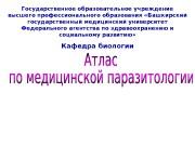 Государственное образовательное учреждение высшего профессионального образования «Башкирский государственный