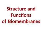 Structure and Functions of Biomembranes  Cell structure