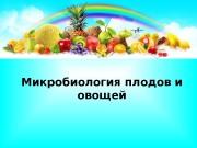 Презентация Микробиология плодов и овощей