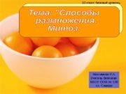 10 класс базовый уровень Максимова Л. А. Учитель