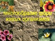 Презентация mnogoobrazie form zhivyhorganizmov