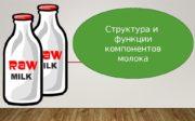 Структура и  функции компонентов молока  Рассмотреть