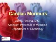 Презентация murmur