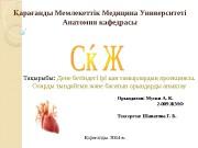 Презентация Мусин А. К.