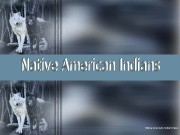 Презентация native-american-indians