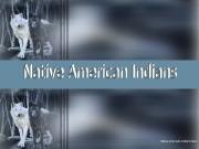 Презентация native-american-indians