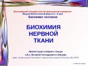 Презентация nervous tissue biochem