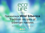 Презентац ія Wild  Siberica Tradition recipes of
