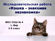 Презентация НОУ класса —   автор К. Белохлебова