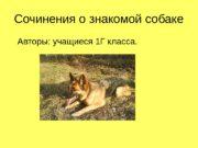 Сочинения о знакомой собаке Авторы: учащиеся 1 Г