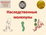Презентация Общая биология 3 new