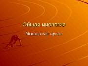 Презентация obschaya miologia myshtsa kak organ