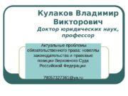 Кулаков Владимир Викторович Доктор юридических наук,  профессор