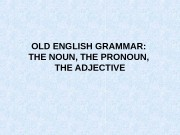 OLD ENGLISH GRAMMAR:  THE NOUN, THE PRONOUN,