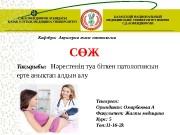 Презентация Омарбекова А
