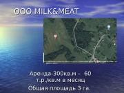 OOO MILK&MEAT Аренда-300 кв. м –  60