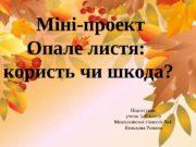 Міні-проект   Опале листя:  користь чи
