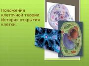 Презентация Орлова И.А. БГ-11.Положения клеточной теории.История развития клетки.