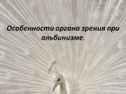 Выражение  «белая ворона»  давно уже стало