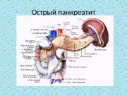 Острый панкреатит  Внешнесекреторная, или экзокринная, деятельность поджелудочной