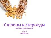 Презентация Павличук А.В.