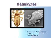 Выполнила: Бейсембаева Б. Е. Группа: 712 – 2