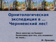 Орнитологическая экспедиция в … Черняевский лес! Леса никогда